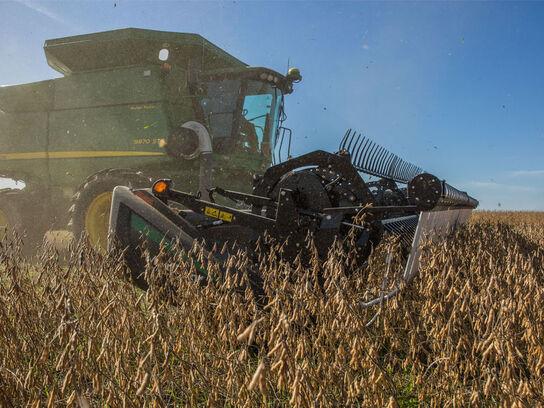 Chasing Grain